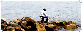 North India Fishing Package